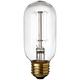 Edison Filament 60 Watt T14 Clear Glass Incandescent Bulb