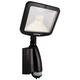 SMART Daylight LED All-Climate Dusk-to-Dawn Solar Light