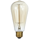 Clear Glass 60 Watt Edison Filament 1910 Style Light Bulb