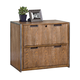 Belmont Rustic Wire Brush Ash 2-Drawer Lateral File Cabinet