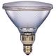 60 Watt Sylvania IR PAR38 Flood Light Bulb