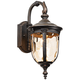 Bellagio 16 1/2 inch High Bronze Downbridge Outdoor Wall Light