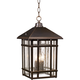 J du J Sierra 16 1/2 inch High Bronze Outdoor Hanging Light