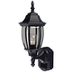 Alexandria 18 1/2 inch High Motion Sensor Outdoor Light in Black