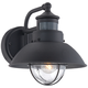 Fallbrook 9 inch High Black Dusk to Dawn Motion Sensor Outdoor Light