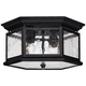 Hinkley Raley Collection 13 inch Wide Black Ceiling Light