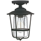 Creekside 8 1/4 inch Wide Black Clear Glass Outdoor Ceiling Light