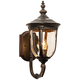 Bellagio 16 1/2 inch High Bronze Upbridge Arm Outdoor Wall Light