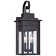 Bransford 17 inch High Black-Specked Gray Outdoor Wall Light