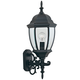 Tiverton 24 1/4 inch High Clear Glass Black Outdoor Wall Light