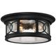 Capistrano 12 inch Wide Black 2-Light Outdoor Ceiling Light