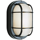 Bulkhead 8 1/2 inch High Black Oval Grid Outdoor Wall Light