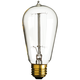 40 Watt Edison Style Medium Base Light Bulb