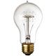 Victorian Edison Style 25 Watt Light Bulb