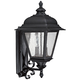 Capital Brookwood 18 3/4 inch High Black Outdoor Wall Light
