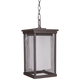 Riviera II 16 inch High Oiled Bronze Outdoor Hanging Light