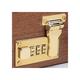 Case Lock