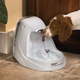 Drinkwell Platinum Pet Water Fountain