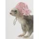 Marshall Ferret Knit Cap Pink