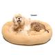 Bagel Dog Bed 54In Caramel