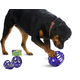 Busy Buddy Kibble Nibble Dog Toy Medium/ Large
