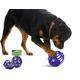 Busy Buddy Kibble Nibble Dog Toy Medium/ Large