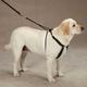 Guardian Gear Anti Pull Dog Harness Xlarge