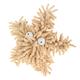 Multipet Sea Shammies Dog Toy Starfish