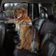 Cruising Companion Dog Car Harness XL Pink