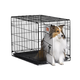 MidWest iCrate Dog Crate 36in x 23in x 25in
