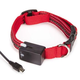 Casual Canine LED Dog Collar 16-24 Red