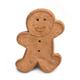 Cloud Star XXL Buddy Biscuit Gingerbread Dog Treat