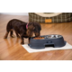 Recycled Plastic Healthy Pet Elevated Feeder 12In