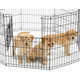 LifeStages Exercise Pen Split MAXLock Door 48 in