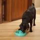 Dog Games Slo-Bowl Drop Style Dog Bowl Teal