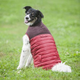 Fashion Pet Red Cord Puffy Dog Vest Small