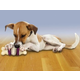 Busy Buddy Bristle Bone Dog Toy Large