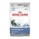 Royal Canin Indoor Adult Dry Cat Food 15 lb