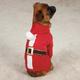 Casual Canine Santa Dog Pajamas MD