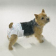 Clean Go Pet Disposable Doggy Diapers Large