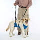 Guardian Gear Lift and Lead Dog Harness 3XLarge