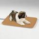 Slumber Pet Heated Kennel Pad Medium