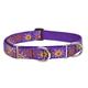 LupinePet Sunny Days Semi-Choke Dog Collar 19-27in
