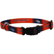 Denver Broncos Dog Collar Large