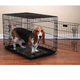 ProSelect Everlasting Dual Door Dog Crate XL
