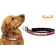NCAA Ohio State Buckeyes Leather Dog Collar LG