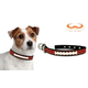 NCAA Georgia Bulldogs Leather Dog Collar LG