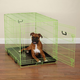 Crate Appeal Color Dog Crate XL Lime
