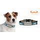 NFL Carolina Panthers Reflective Dog Collar LG
