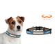 NFL Detroit Lions Reflective Dog Collar LG